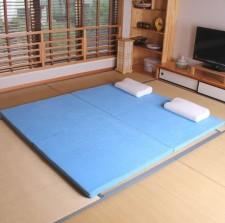 全新日式床墊  (200*150/180*5CM) 藍色w3098